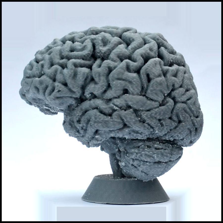 Creativo 3D Servicios 3D Educación